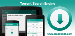 torrent_search_banner_new_style_en